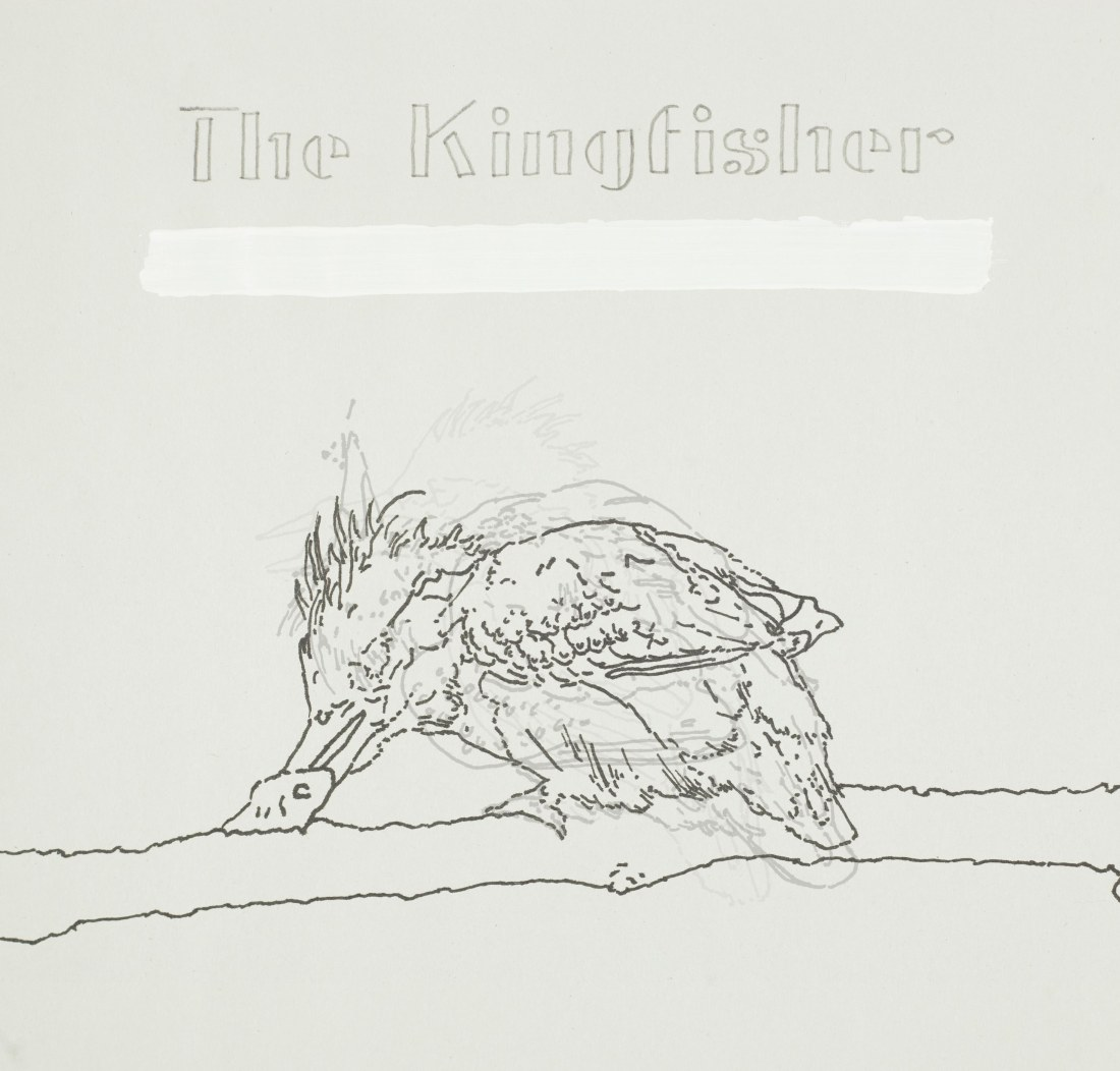 kingisher_bw_finished
